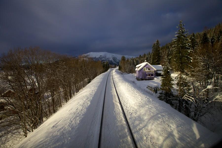 Photo: Sindre Skrede/NRK